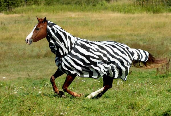 Bucas Buzz Off Zebra Full Neck (FN) Fliegendecke