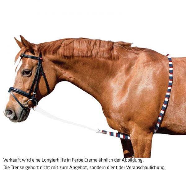 Imperial Riding Longierhilfe Ausbinder, Blue Breeze